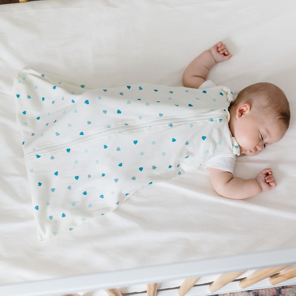 Спальный мешок Ergobaby On the Move Sleep Bag (размер M) - Heart To Heart
